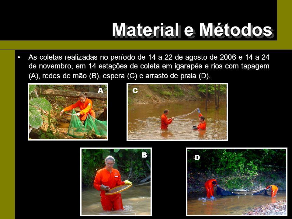 As coletas realizadas no período de 14 a 22 de agosto de 2006 e 14 a 24 de novembro, em 14 estações de coleta em igarapés e rios com tapagem (A), rede