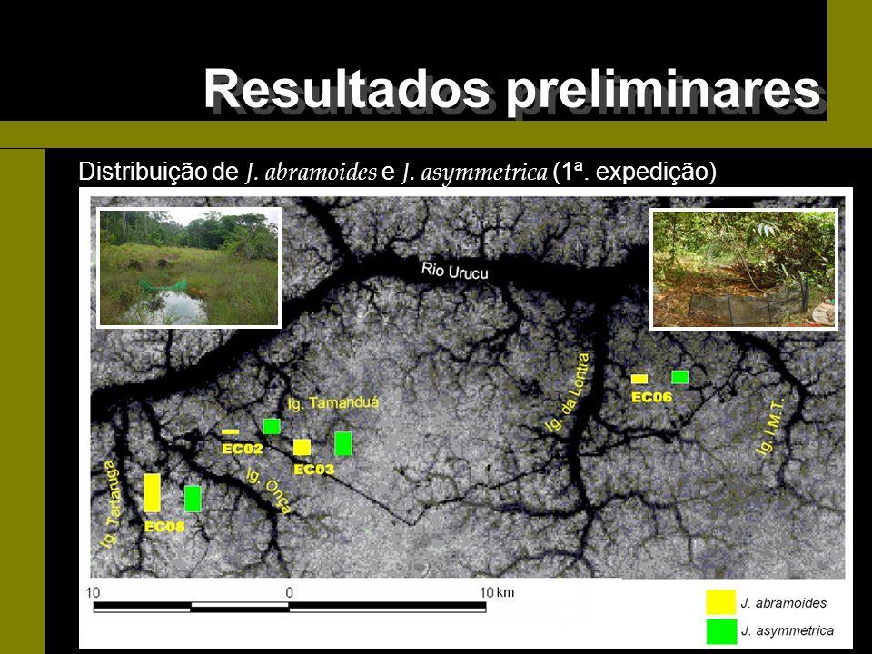 Distribuição de J. abramoides e J. asymmetrica (1ª. expedição) Resultados preliminares