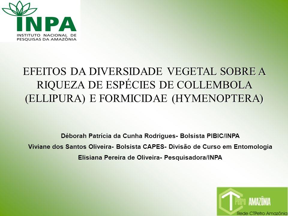 EFEITOS DA DIVERSIDADE VEGETAL SOBRE A RIQUEZA DE ESPÉCIES DE COLLEMBOLA (ELLIPURA) E FORMICIDAE (HYMENOPTERA) Déborah Patrícia da Cunha Rodrigues- Bo