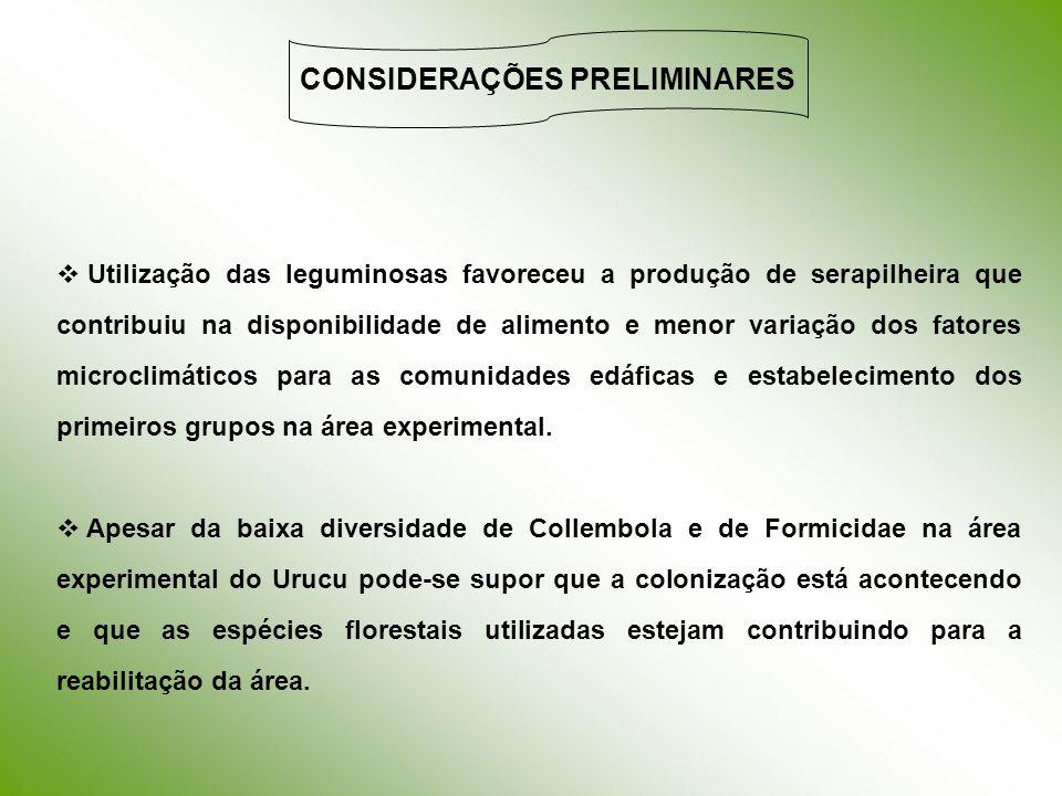 CONSIDERAÇÕES PRELIMINARES Utilização das leguminosas favoreceu a produção de serapilheira que contribuiu na disponibilidade de alimento e menor varia