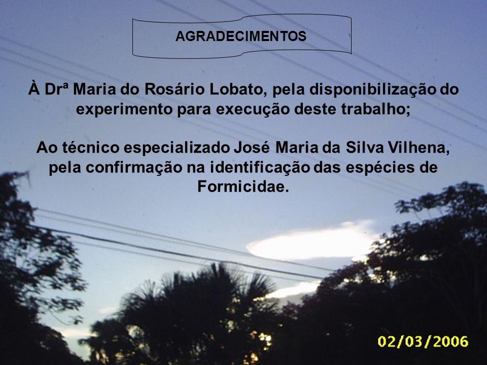 À Drª Maria do Rosário Lobato, pela disponibilização do experimento para execução deste trabalho; Ao técnico especializado José Maria da Silva Vilhena