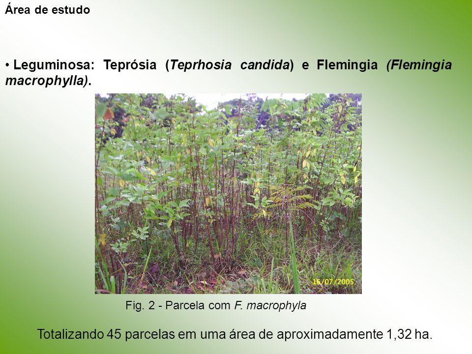 Leguminosa: Teprósia (Teprhosia candida) e Flemingia (Flemingia macrophylla). Totalizando 45 parcelas em uma área de aproximadamente 1,32 ha. Área de