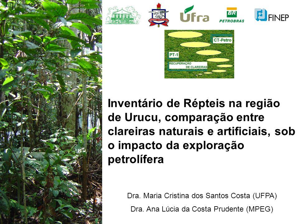 Inventário de Répteis na região de Urucu, comparação entre clareiras naturais e artificiais, sob o impacto da exploração petrolífera Dra. Maria Cristi