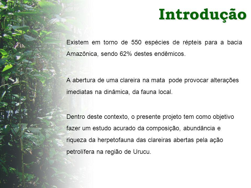 Expedição: 02 a 21 de julho de 2003 03 a 17 de novembro 2004 Os répteis capturados foram sacrificados e depositados na coleção herpetológica do Museu Paraense Emílio Goeldi (MPEG).