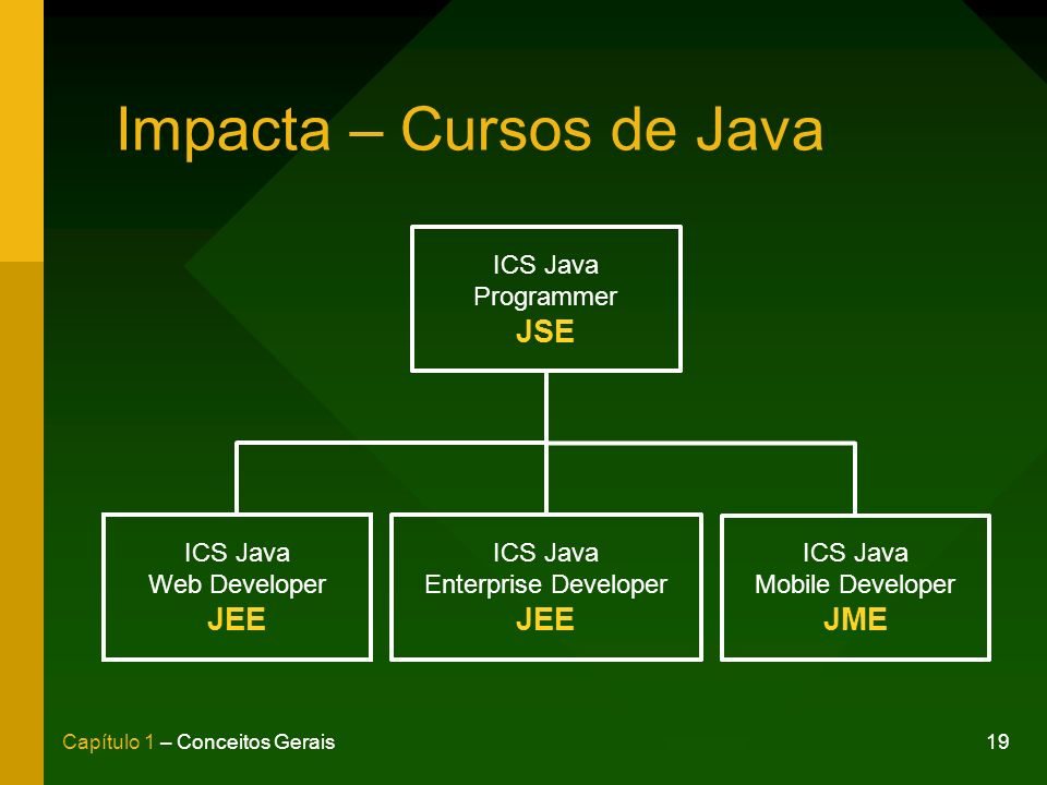 19Capítulo 1 – Conceitos Gerais Impacta – Cursos de Java ICS Java Programmer JSE ICS Java Web Developer JEE ICS Java Enterprise Developer JEE ICS Java