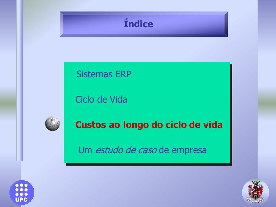 Índice Sistemas ERP Ciclo de Vida Custos ao longo do ciclo de vida Um estudo de caso de empresa