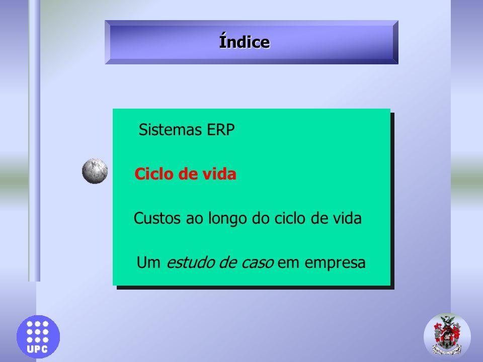 Índice Sistemas ERP Ciclo de vida Custos ao longo do ciclo de vida Um estudo de caso em empresa