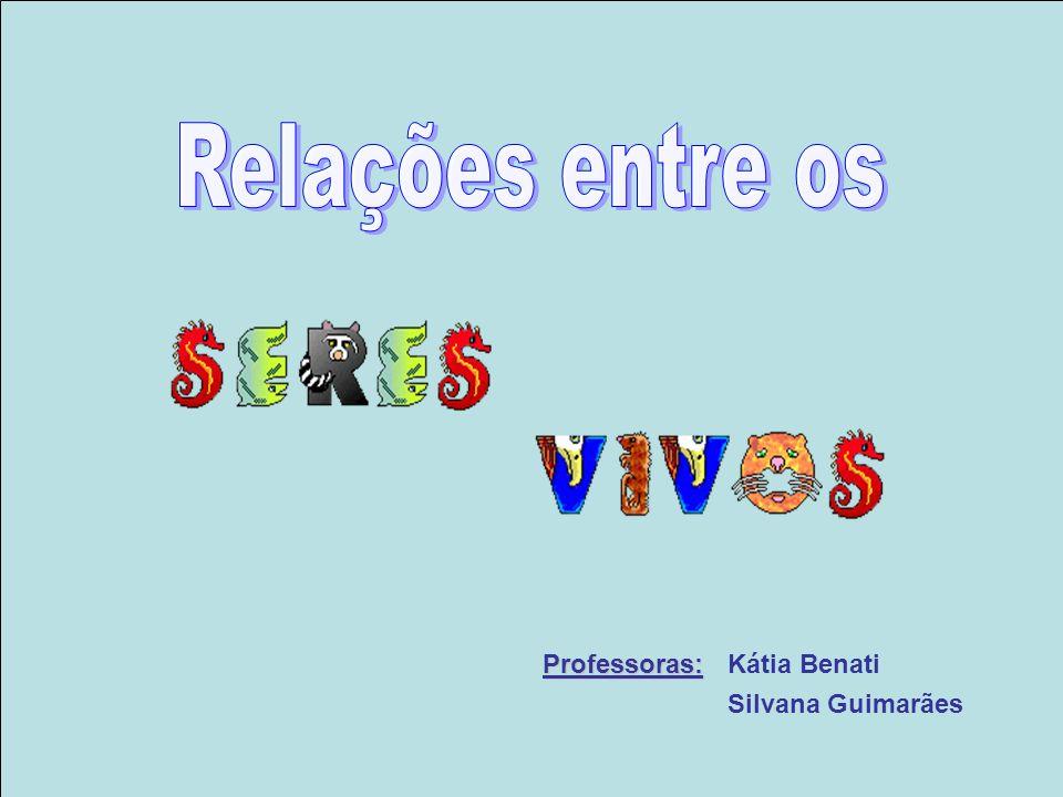 Professoras: Professoras: Kátia Benati Silvana Guimarães