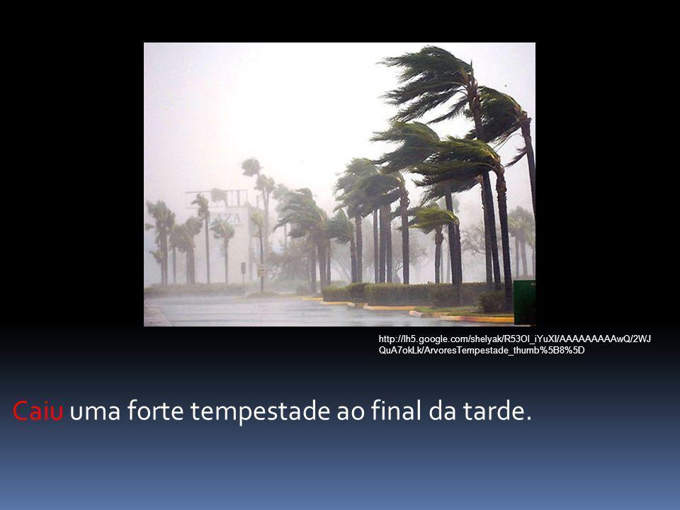 Caiu uma forte tempestade ao final da tarde. http://lh5.google.com/shelyak/R53Ol_iYuXI/AAAAAAAAAwQ/2WJ QuA7okLk/ArvoresTempestade_thumb%5B8%5D
