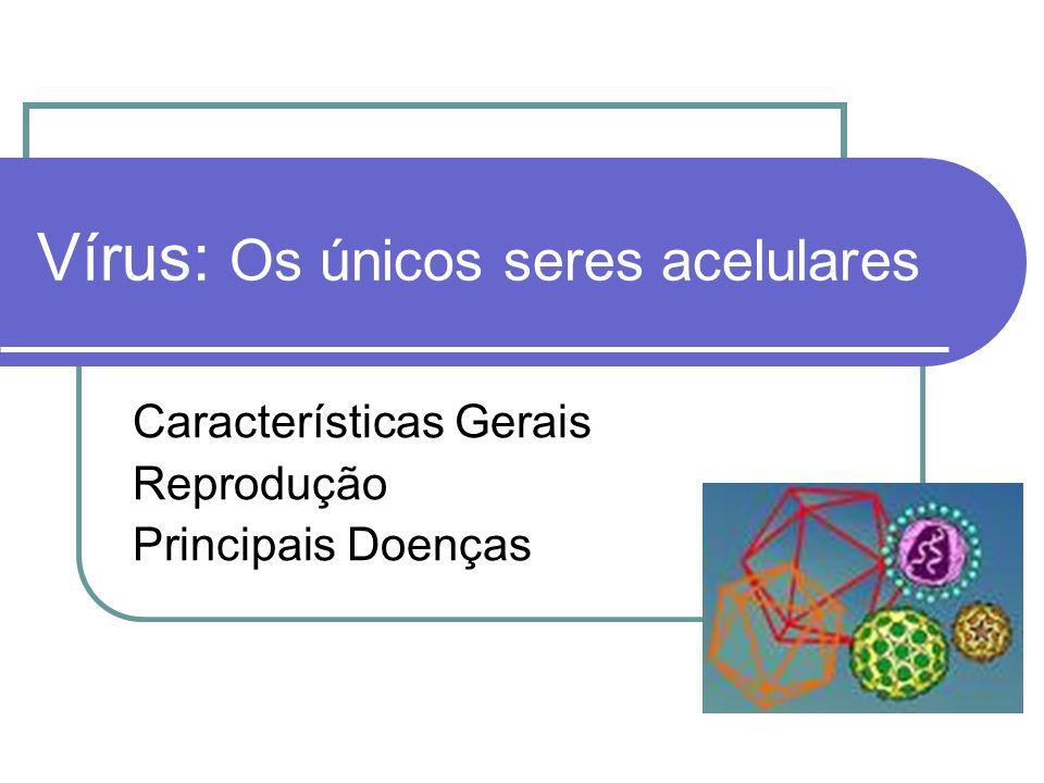 Vírus: Os únicos seres acelulares Características Gerais Reprodução Principais Doenças