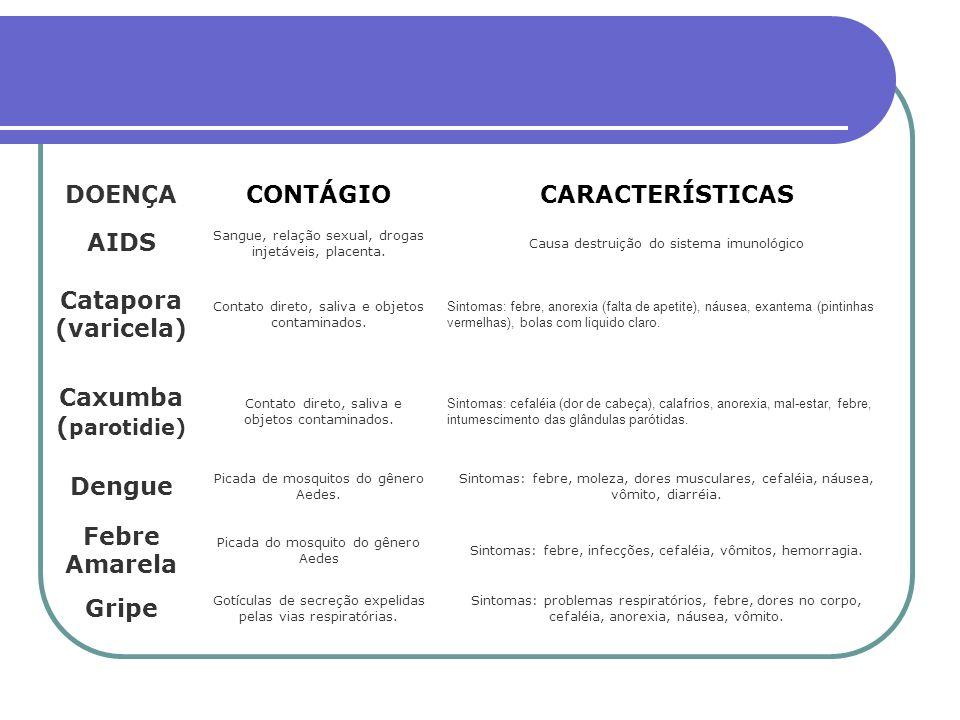 DOENÇACONTÁGIOCARACTERÍSTICAS AIDS Sangue, relação sexual, drogas injetáveis, placenta.