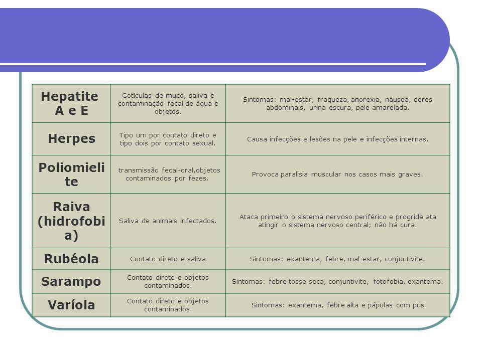 Hepatite A e E Gotículas de muco, saliva e contaminação fecal de água e objetos. Sintomas: mal-estar, fraqueza, anorexia, náusea, dores abdominais, ur