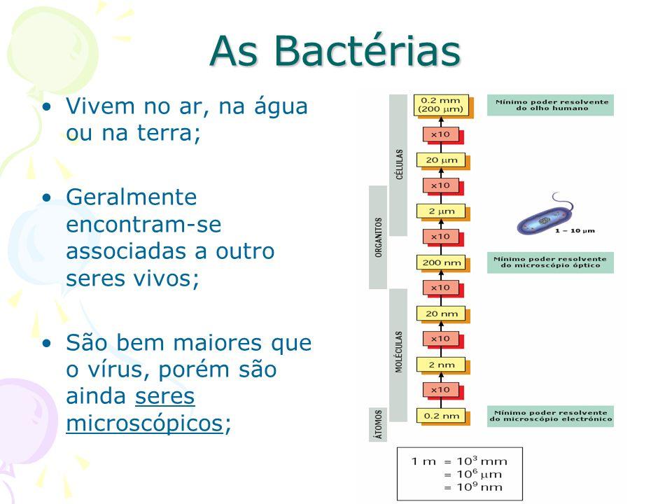 As Bactérias Vivem no ar, na água ou na terra; Geralmente encontram-se associadas a outro seres vivos; São bem maiores que o vírus, porém são ainda seres microscópicos;