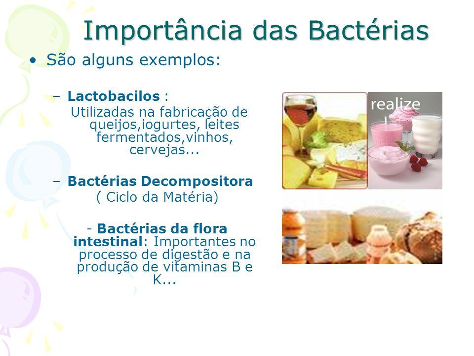 Importância das Bactérias São alguns exemplos: –Lactobacilos : Utilizadas na fabricação de queijos,iogurtes, leites fermentados,vinhos, cervejas...