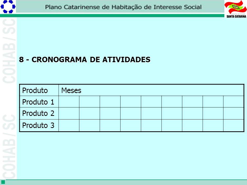 8 - CRONOGRAMA DE ATIVIDADES ProdutoMeses Produto 1 Produto 2 Produto 3