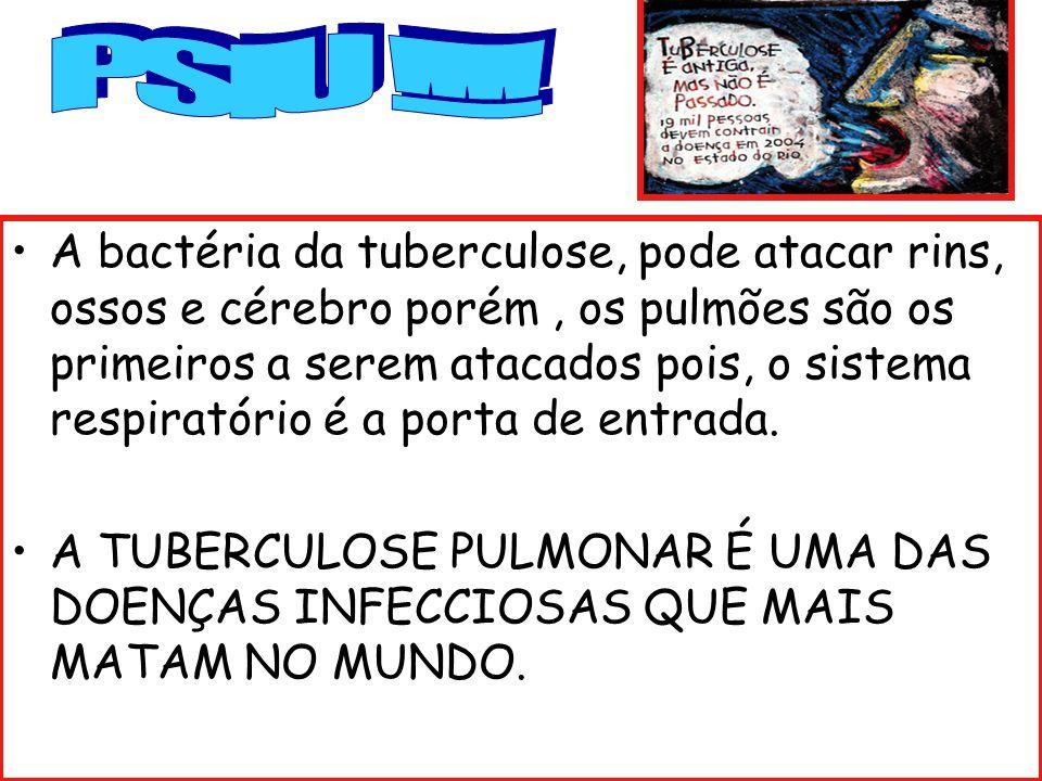 A bactéria da tuberculose, pode atacar rins, ossos e cérebro porém, os pulmões são os primeiros a serem atacados pois, o sistema respiratório é a port