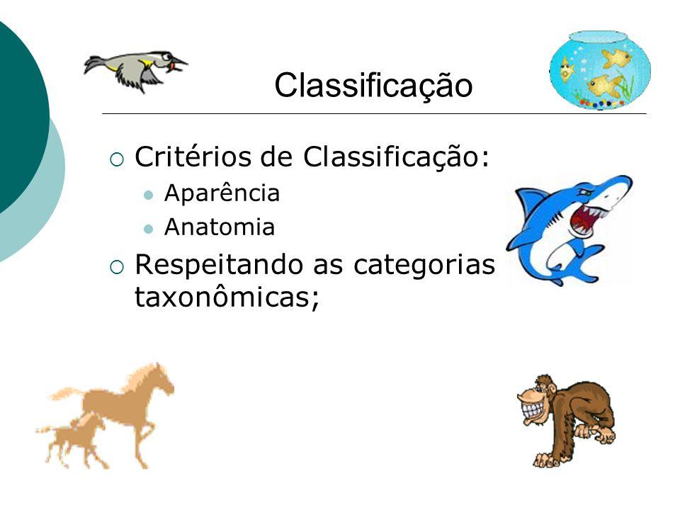 Critérios de Classificação: Aparência Anatomia Respeitando as categorias taxonômicas;