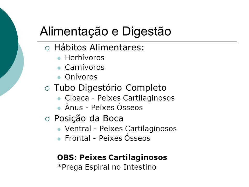 Alimentação e Digestão Hábitos Alimentares: Herbívoros Carnívoros Onívoros Tubo Digestório Completo Cloaca - Peixes Cartilaginosos Ânus - Peixes Ósseo