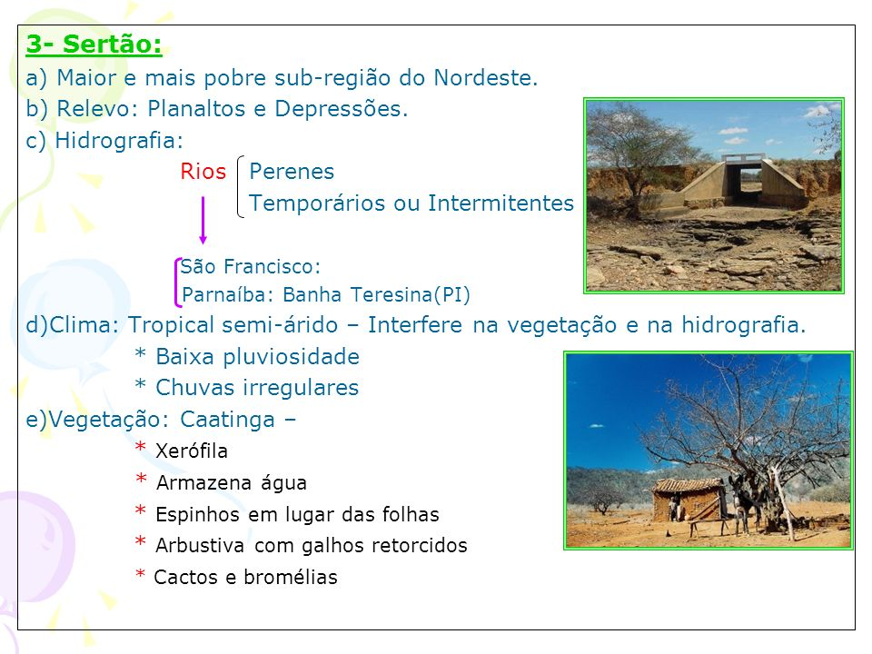 3- Sertão: a) Maior e mais pobre sub-região do Nordeste. b) Relevo: Planaltos e Depressões. c) Hidrografia: Rios Perenes Temporários ou Intermitentes