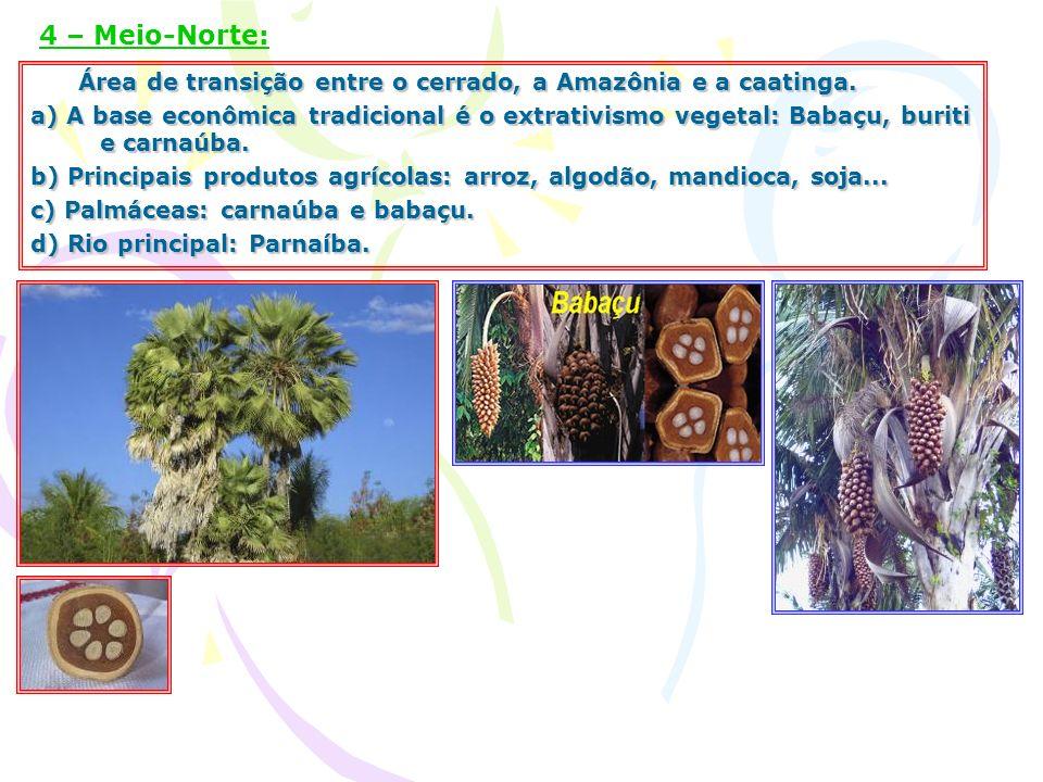 Área de transição entre o cerrado, a Amazônia e a caatinga. Área de transição entre o cerrado, a Amazônia e a caatinga. a) A base econômica tradiciona