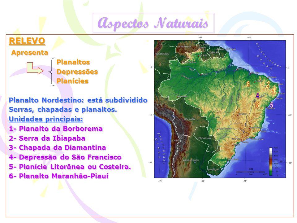 Aspectos Naturais RELEVO Apresenta Apresenta Planaltos Planaltos Depressões Depressões Planícies Planícies Planalto Nordestino: está subdividido Serra