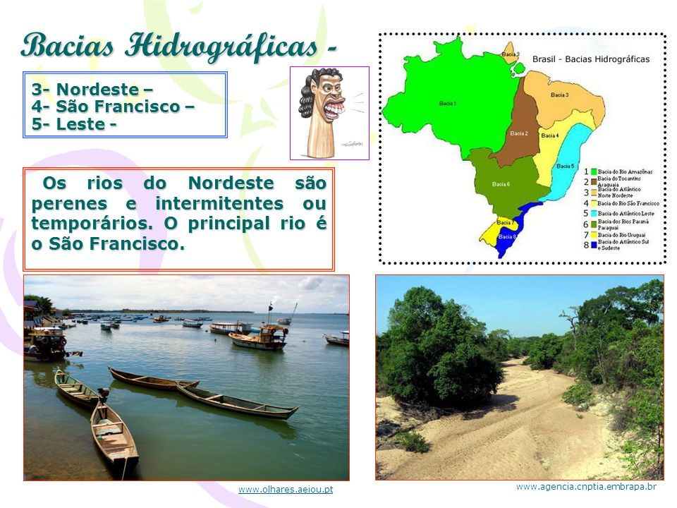 Bacias Hidrográficas - Os rios do Nordeste são perenes e intermitentes ou temporários. O principal rio é o São Francisco. Os rios do Nordeste são pere