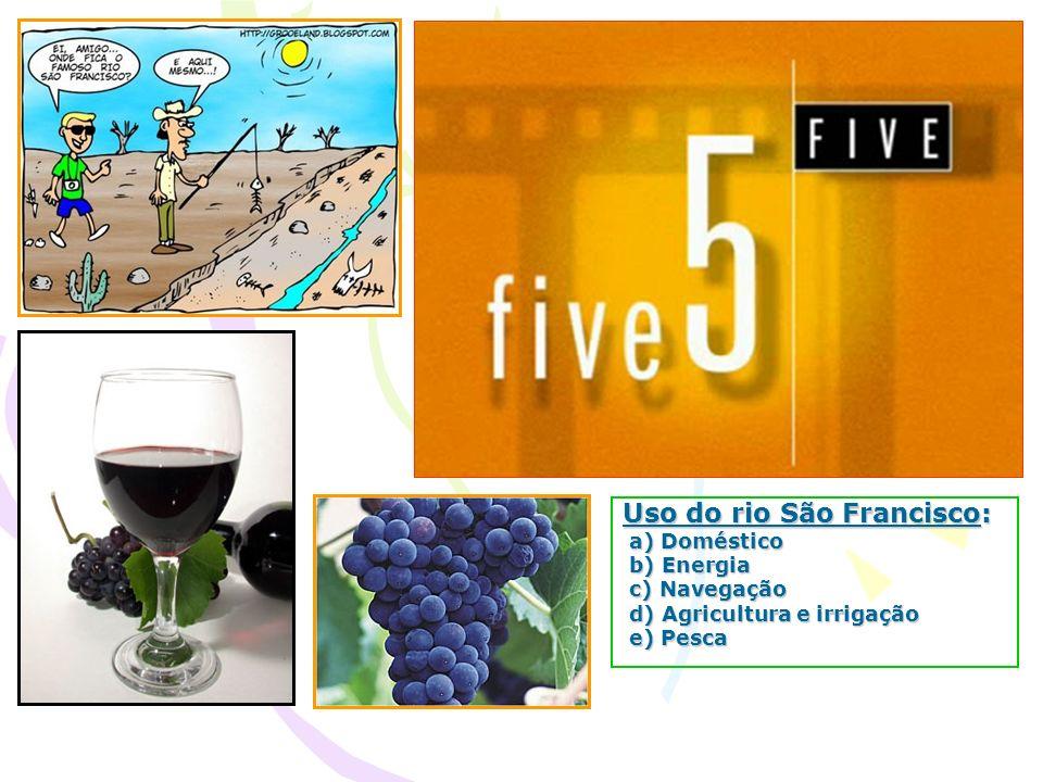 Uso do rio São Francisco: a) Doméstico a) Doméstico b) Energia b) Energia c) Navegação c) Navegação d) Agricultura e irrigação d) Agricultura e irriga