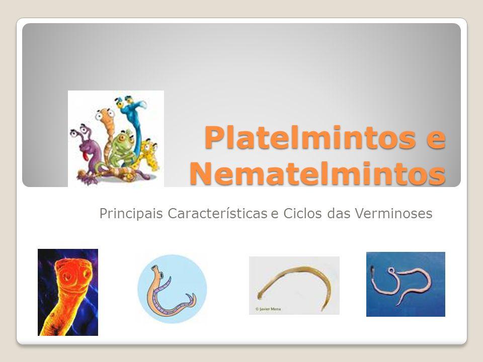 Platelmintos e Nematelmintos Principais Características e Ciclos das Verminoses