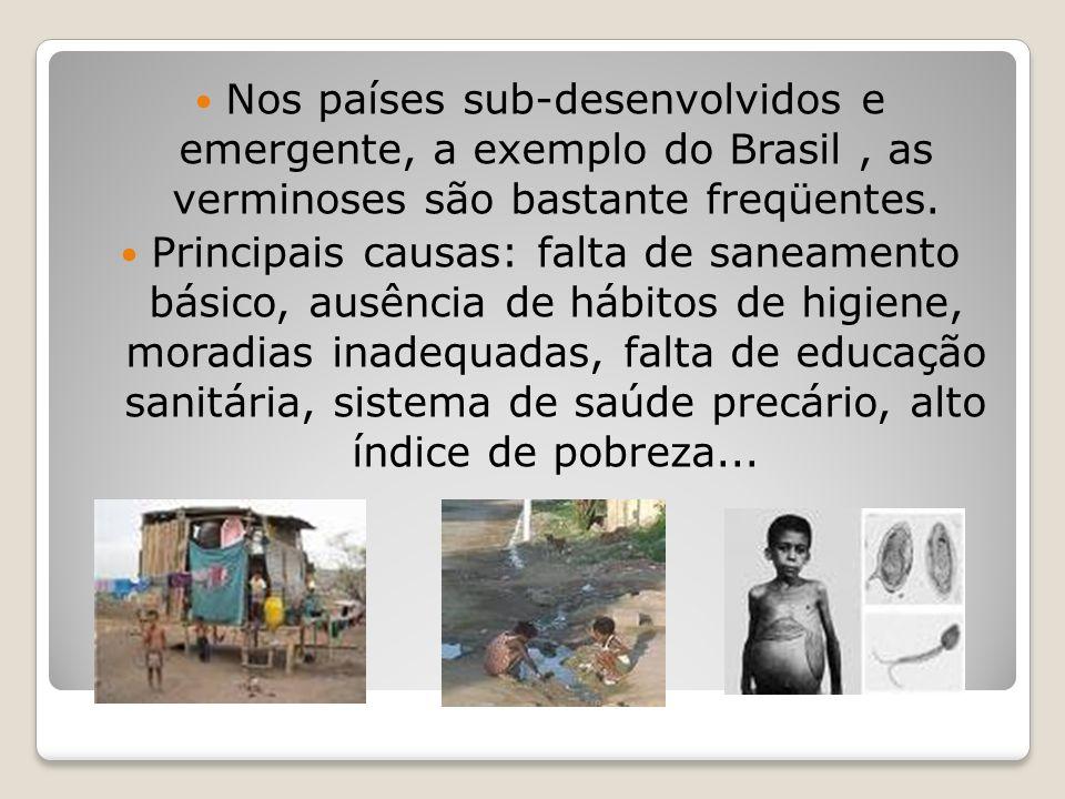 Nos países sub-desenvolvidos e emergente, a exemplo do Brasil, as verminoses são bastante freqüentes. Principais causas: falta de saneamento básico, a