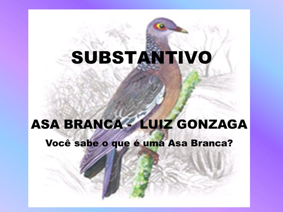 SUBSTANTIVO ASA BRANCA - LUIZ GONZAGA Você sabe o que é uma Asa Branca?