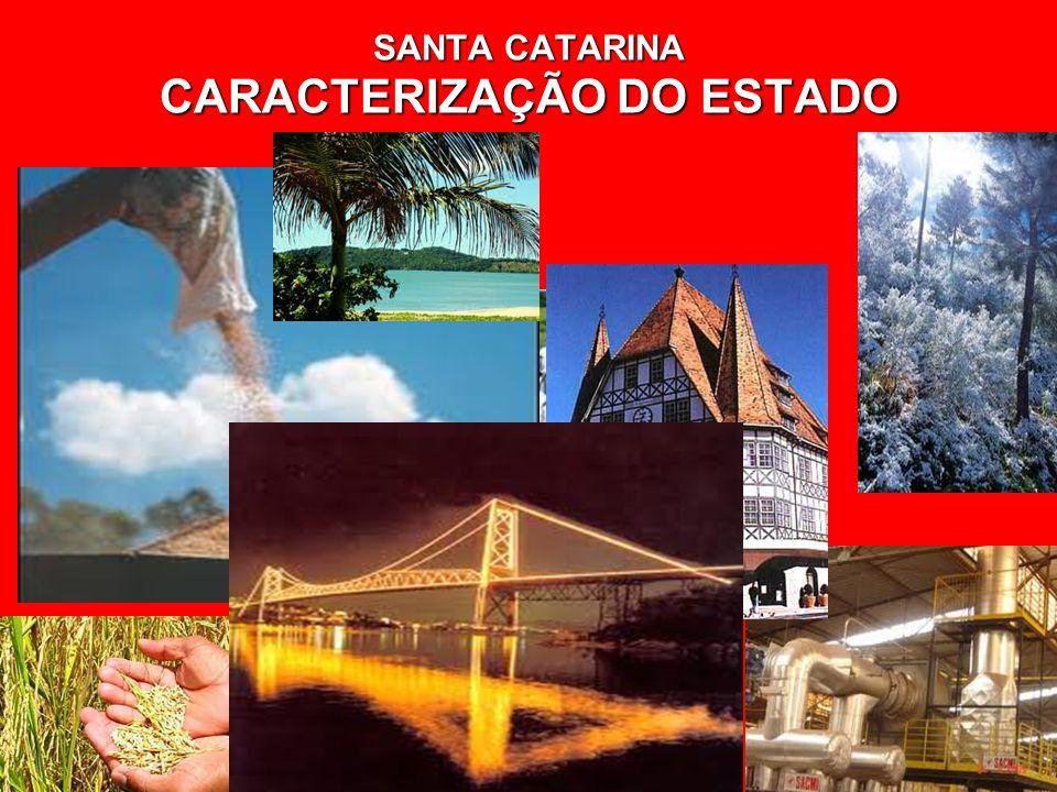 SANTA CATARINA CARACTERIZAÇÃO DO ESTADO SANTA CATARINA CARACTERIZAÇÃO DO ESTADO