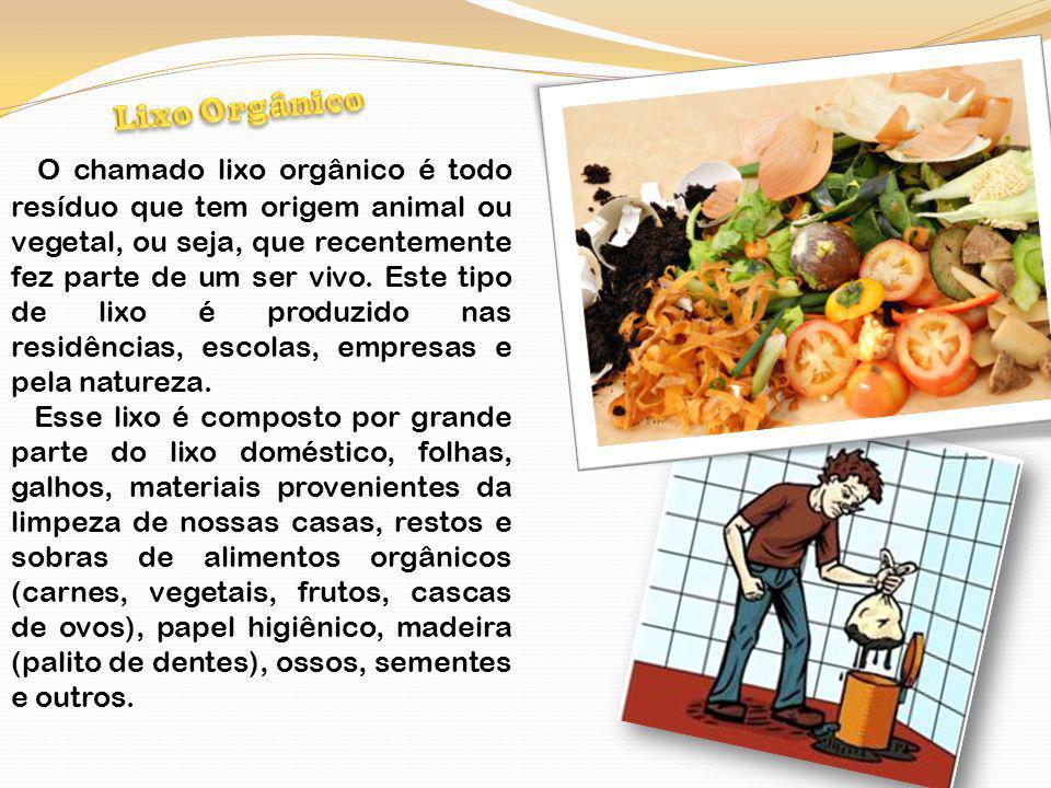 Lixo inorgânico inclui todo material que não possui origem biológica, ou que foi produzida por meios não- naturais, como plásticos, produtos de metal, vidro, detergentes, etc.