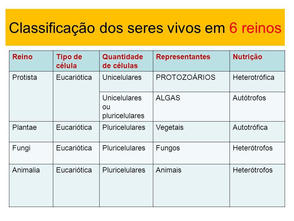 ReinoTipo de célula Quantidade de células RepresentantesNutrição ProtistaEucarióticaUnicelularesPROTOZOÁRIOSHeterotrófica Unicelulares ou pluricelular