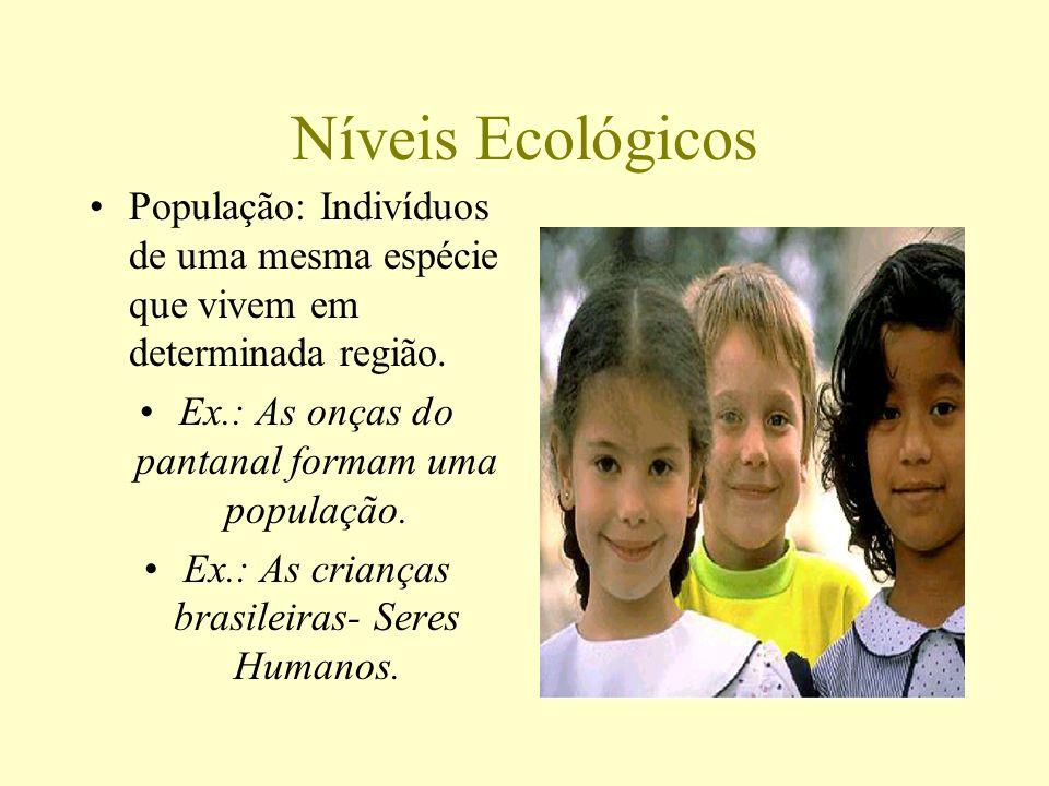 Níveis Ecológicos População: Indivíduos de uma mesma espécie que vivem em determinada região. Ex.: As onças do pantanal formam uma população. Ex.: As