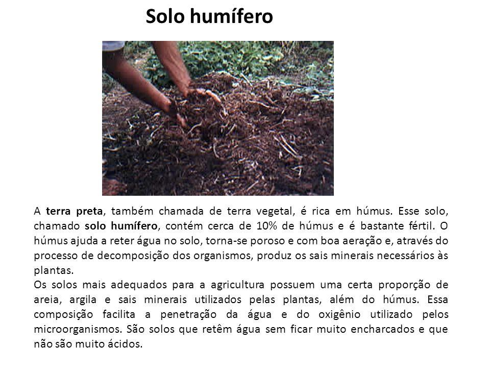 A terra preta, também chamada de terra vegetal, é rica em húmus. Esse solo, chamado solo humífero, contém cerca de 10% de húmus e é bastante fértil. O