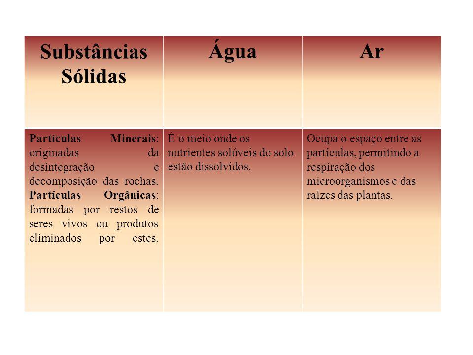 Substâncias Sólidas ÁguaAr Partículas Minerais: originadas da desintegração e decomposição das rochas. Partículas Orgânicas: formadas por restos de se