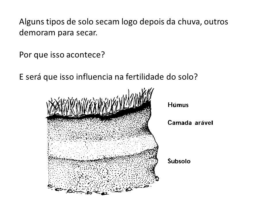 Alguns tipos de solo secam logo depois da chuva, outros demoram para secar. Por que isso acontece? E será que isso influencia na fertilidade do solo?