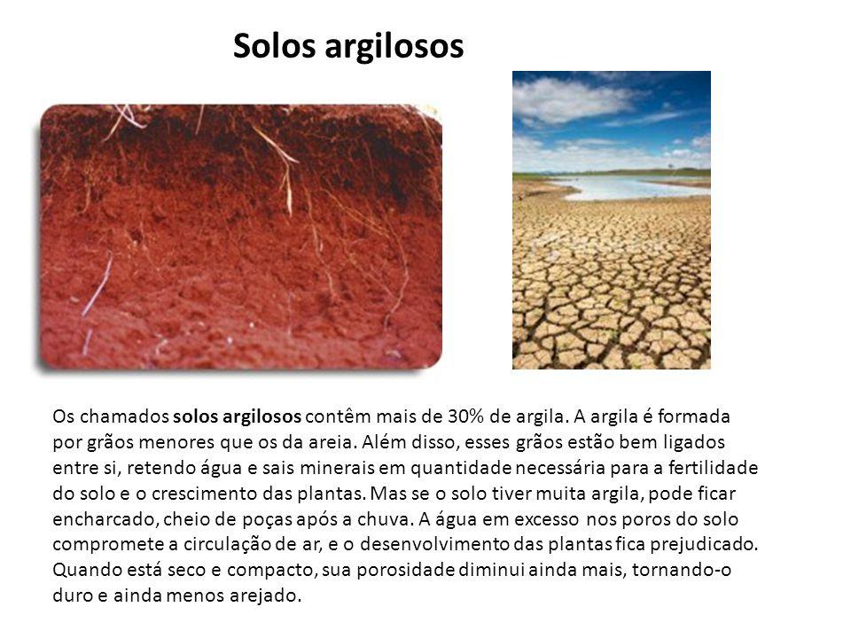 Os chamados solos argilosos contêm mais de 30% de argila. A argila é formada por grãos menores que os da areia. Além disso, esses grãos estão bem liga