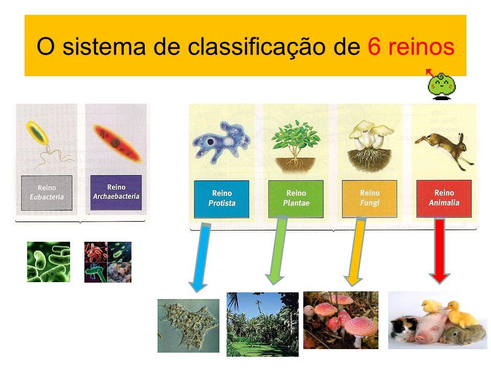 O sistema de classificação de 6 reinos