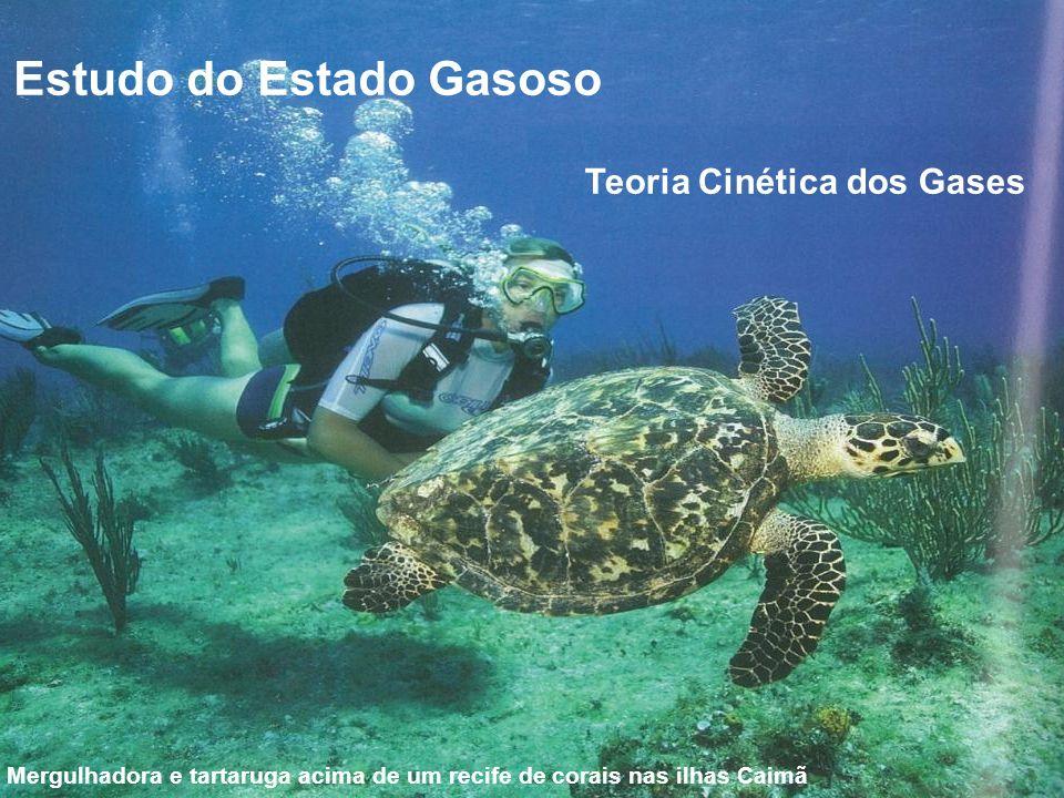 Estudo do Estado Gasoso Mergulhadora e tartaruga acima de um recife de corais nas ilhas Caimã Teoria Cinética dos Gases