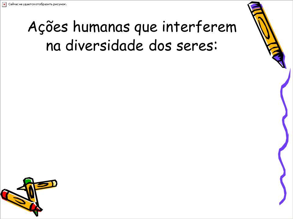 Ações humanas que interferem na diversidade dos seres :