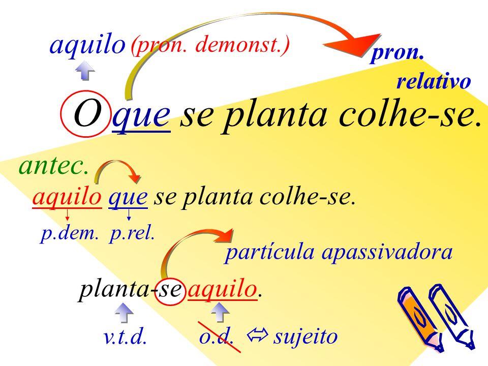 pron. relativo aquilo (pron. demonst.) aquilo que se planta colhe-se.