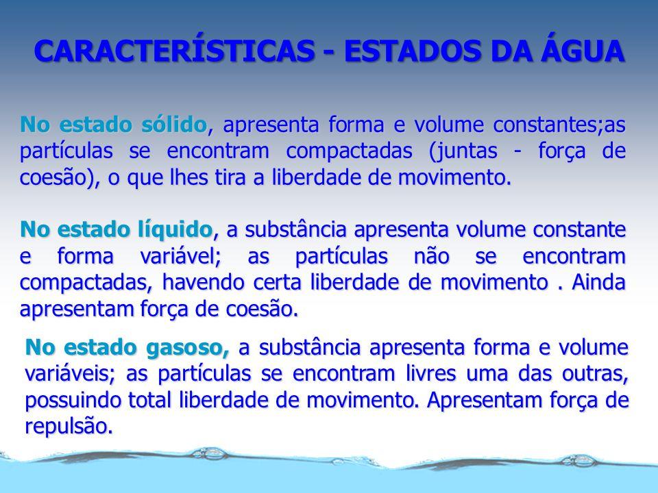 Caracterização dos estados físicos da água