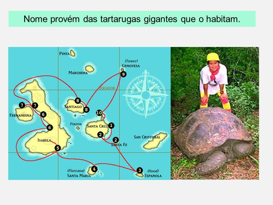 Darwinismo Dados biogeográficos : Localizadas a 1000 km da América do Sul, no Oceano Pacífico, propriedade do Equador e Patrimônio da Humanidade, apre