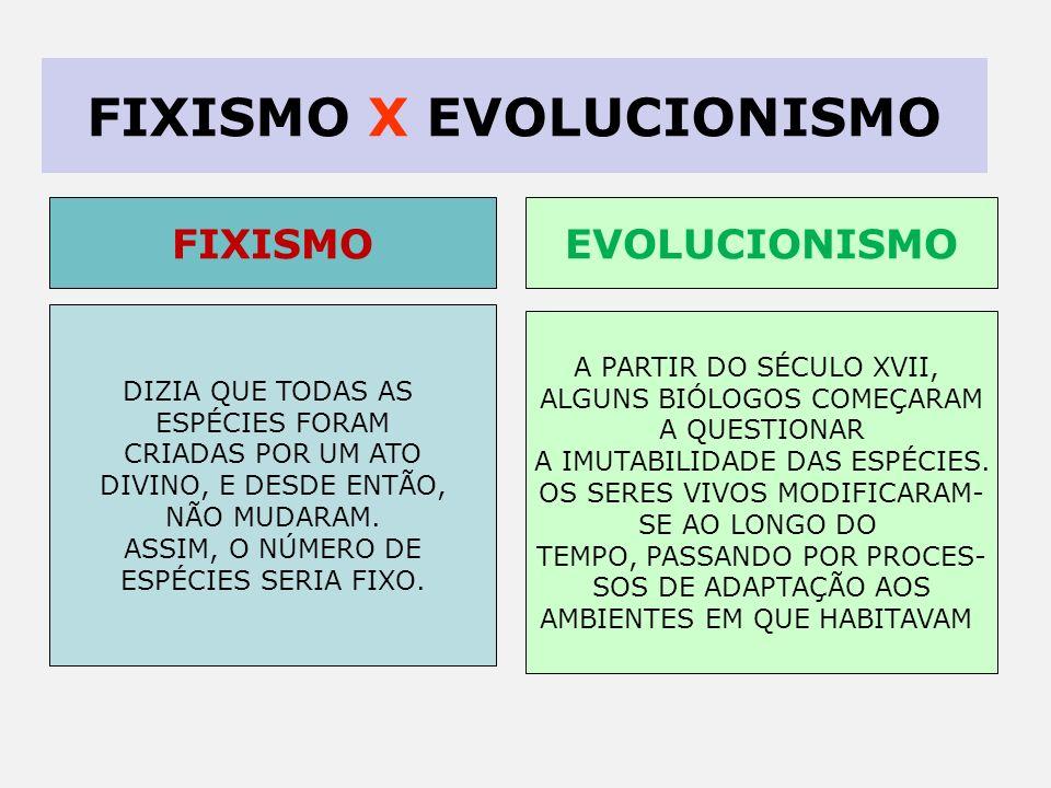 FIXISMO X EVOLUCIONISMO DIZIA QUE TODAS AS ESPÉCIES FORAM CRIADAS POR UM ATO DIVINO, E DESDE ENTÃO, NÃO MUDARAM.