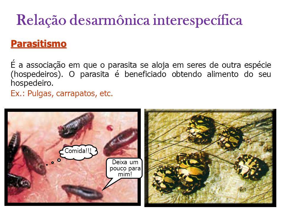 Parasitismo É a associação em que o parasita se aloja em seres de outra espécie (hospedeiros). O parasita é beneficiado obtendo alimento do seu hosped