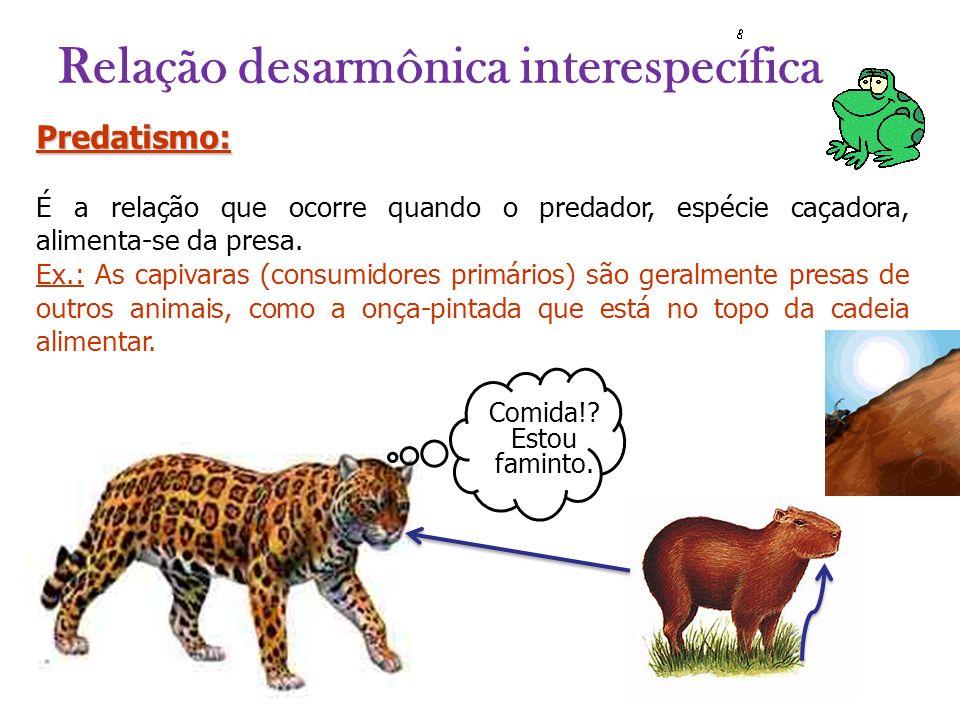 Predatismo: É a relação que ocorre quando o predador, espécie caçadora, alimenta-se da presa. Ex.: As capivaras (consumidores primários) são geralment