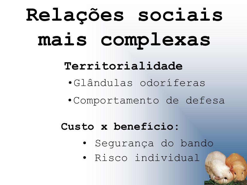 Territorialidade Segurança do bando Glândulas odoríferas Custo x benefício: Risco individual Relações sociais mais complexas Comportamento de defesa