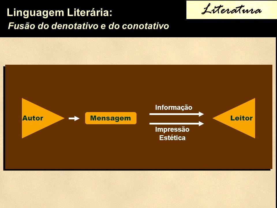 Linguagem Literária: Fusão do denotativo e do conotativo Literatura Autor Mensagem Leitor Informação Impressão Estética
