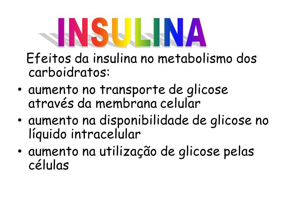 Efeitos da insulina no metabolismo dos carboidratos: aumento no transporte de glicose através da membrana celular aumento na disponibilidade de glicose no líquido intracelular aumento na utilização de glicose pelas células